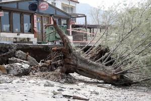 Storm Damage Petra